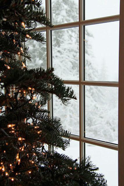 Christmas gift guide for me Weihnachtsbaum vor einem Fenster