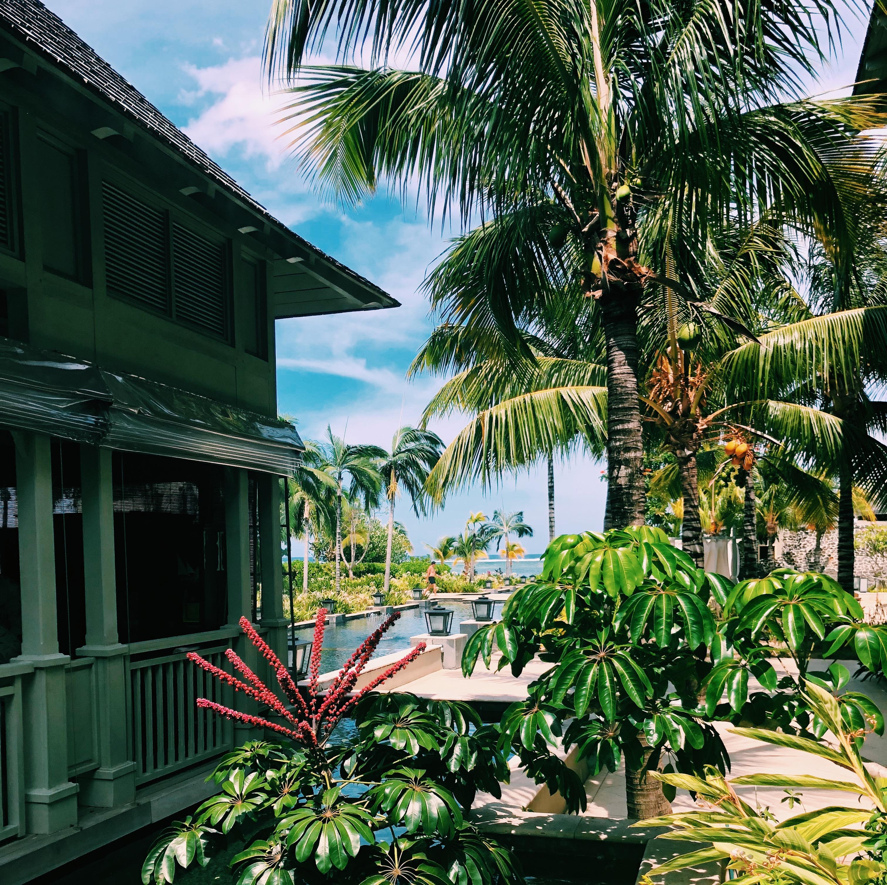 Dezember auf...Mauritius Blick Rezeption zum Strand