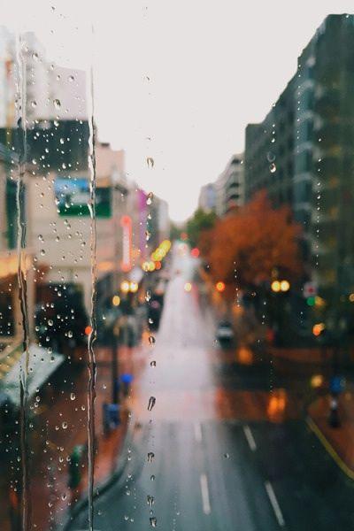 Warum Egoismus manchmal auch gut ist Straße im Regen